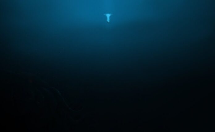 Abyss-affiche[1]